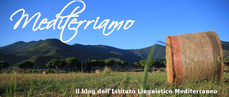 Istituto Linguistico Mediterraneoのブログ