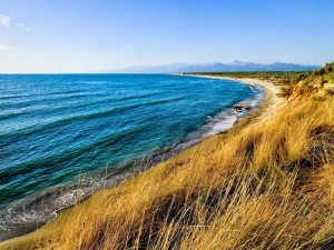 Il panorama marino del Parco di San Rossore